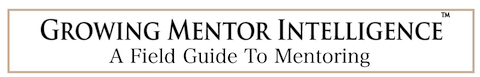 Growing Mentor Intelligence